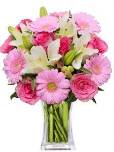 cvjećarnica split