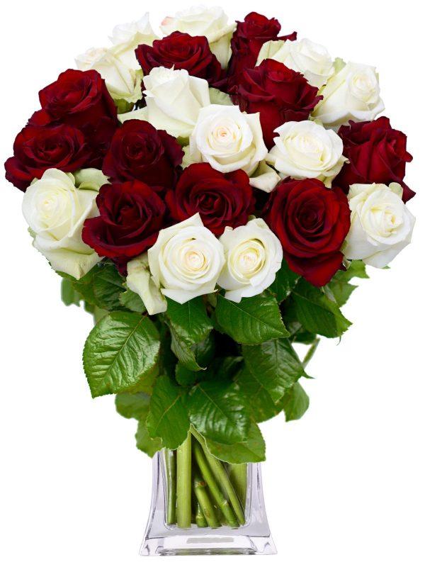 dostava ruža