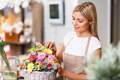 Cvjećarna Šibenik dostava cvijeća